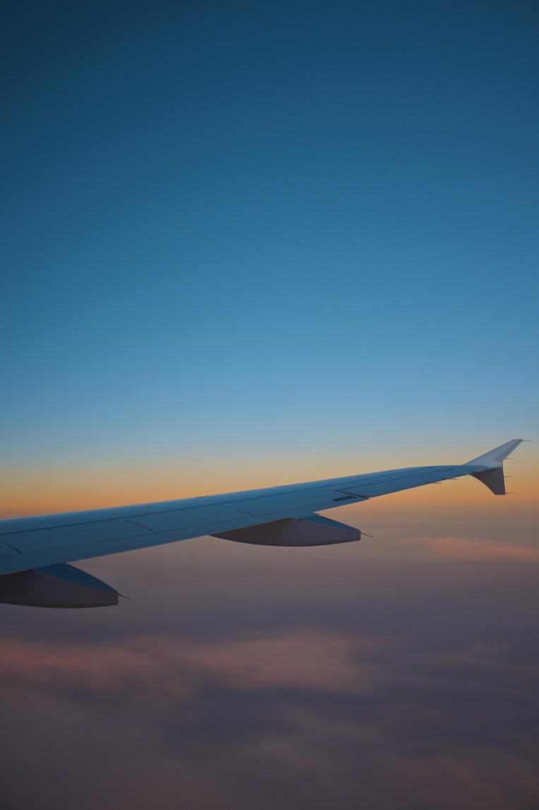 Flyget hem