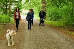 Promenad vid slott nära Kivik