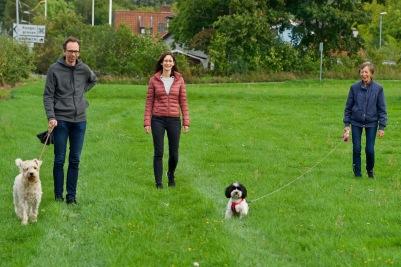 """Lilla hunden är """"Ester"""", grannhund till Linus vars husse och matte behöver hjälp med hundpromenerandet"""